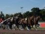 11- Hippodrome d'Enghien (juillet 2020)