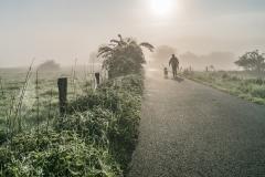 0C3-Promenade matinale