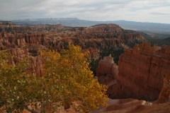 Jean-Claude R : Brice canyon