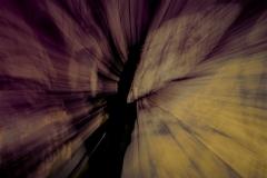 Liquidambar Abstrait-02 JLB