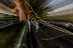 Liquidambar Abstrait-03 JLB