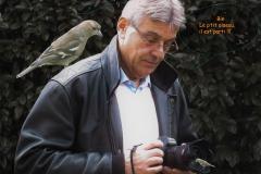JLB 02 - Oiseau